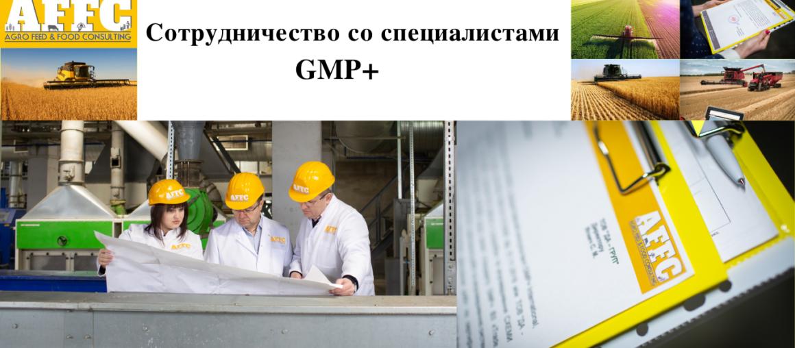 Сотрудничество со специалистами GMP+